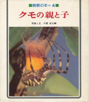 画像1: クモの親と子 観察の本4